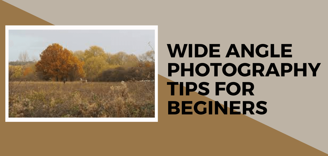 wide angle photography tips and tricks